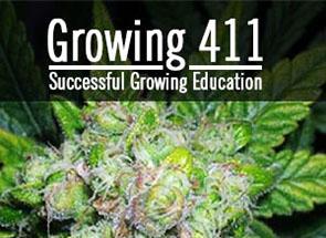 Growing 411